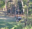 High Meadow Ranch Golf Club - Houston, Texas - woods