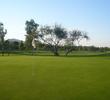 Scottsdale Silverado Golf Club - Greens