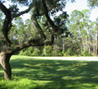 Okefenokee Country Club - Old Oaks