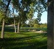 College Fields Golf Club - Trees