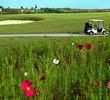 Mangolia Creek Golf Links - Clubhouse