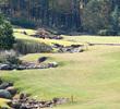 Reynolds Plantation's Oconee Golf Course - Hole 16
