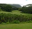Luana Hills C.C. golf course - hole 13