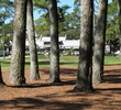 Harbour Town Golf Links at Sea Pines Resort - hole 9