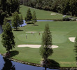 Disney's Palm Golf Course - green