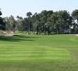 Wigwam Resort Golf Club Gold Course - Greens