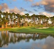 PGA National - Champion golf course - 8th