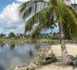 Lely Resort's Flamingo Island golf course