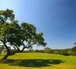 Vaaler Creek Golf Club - hole 8