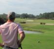Providence Golf Club - 13th hole