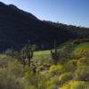 Eagle Mountain Golf Club - hole 14
