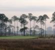 Burnt Pine Golf Club - No. 14
