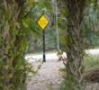 Bonita Bay East - wildlife crossing