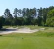 Carolina National Golf Club - Ibis nine - hole 8