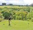 Practice swings