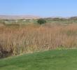 Genoa Lakes Golf Club - Forced Marsh