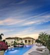Old Palm - Castillo