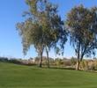 desertcanyonno.12trees