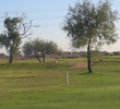 Cypress Golf Course  - Trees