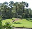Hombre Golf Club - Palm Trees