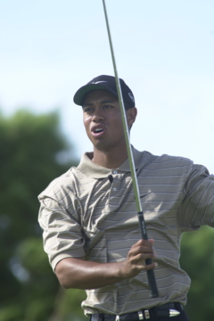 By skipping The Barclays, Tiger Woods makes it clear that golf fans can skip the FedEx Cup.
