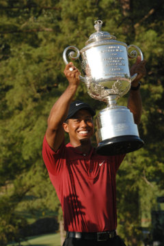Turns out the FedEx Cup is just something else for Tiger Woods to win.