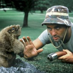 Carl Spackler was nowhere in site when a renegade gopher tried its best to change the course of golf history at The Barclays.