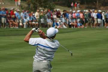 Even the prettiest pro golf swing can do ugly things to the lower back.