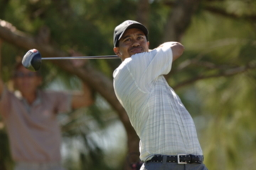 Is this Tiger Woods or Brian Gay? We'll let ESPN's Jason Sobel be the judge.