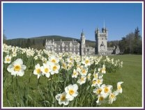 For the queen Balmoral Castle is home away from home; for you it's a great place to visit between rounds at Aberdeenshire courses.
