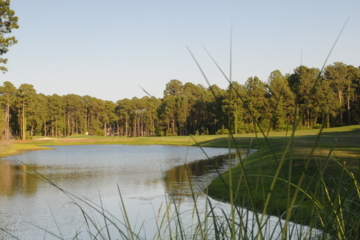 Hilton Head Courses For The Long Hitters