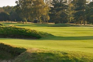 Walton Heath is strangely reminiscent of the great links -- rather bizarre, since it sits 700 feet above sea level.