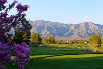 value and variety rule at aliante golf club las vegas golf