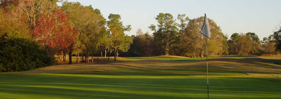 The Eagles GC - Forest