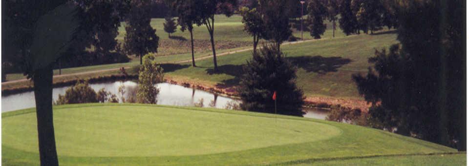 Tanglewood GC: #13