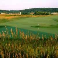 Raspberry Falls Golf & Hunt Club: #11