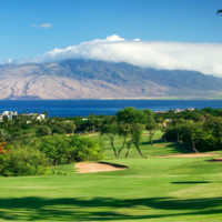Wailea - Old Blue #4