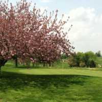 Moss Hill GC: #9