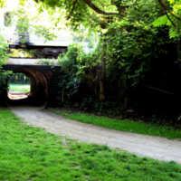 Canal Shores GC: #11
