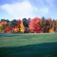 Viking Meadows GC