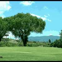 Cobre Valle CC: #4