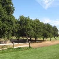 Emerald Lakes Golf Center: #3