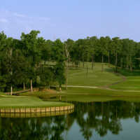 Cobblestone Park GC - Black: #2