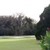 View of the 15th hole at Temple Terrace Golf & Country Club