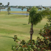 A view of a green at Treasure Bay Golf & Tennis