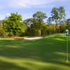 A view of a green from Dogwood at Marriott's Grand Hotel & Lakewood Golf Club (Michael Clemmer)
