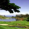 A view of tee #17 at Big Island Country Club