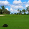 A view of a special guest looking at a green at Bonaventure Golf Club