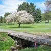 A spring day view from Smethport Country Club